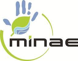 Archivo:Logo-minae big.jpg - Wikipedia, la enciclopedia libre